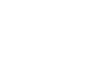 85th seal